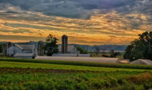 morning in amish country jim fisher july