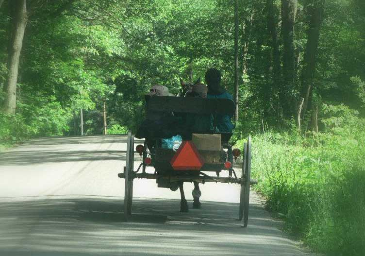 scenic-drive-amish-buggy
