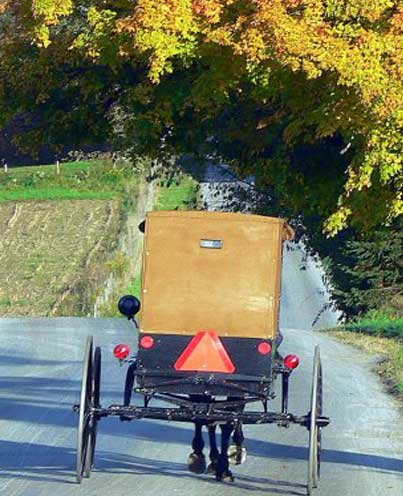 amish-buggy-western-pa