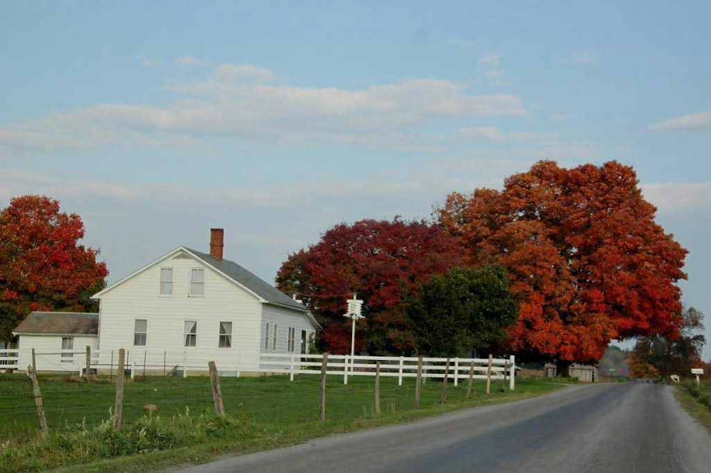 amish-house-country-road